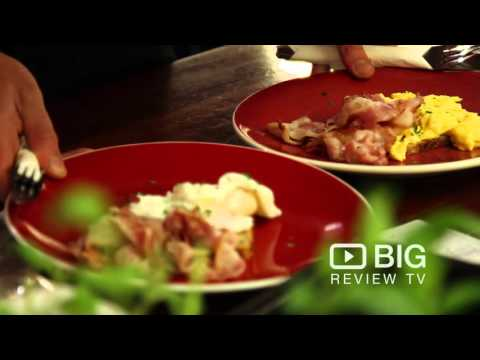 Cafe   Salvation Coffee   Newtown   Wellington   Video   Coffee   Review   Content