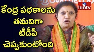 BJP Leader Daggubati Purandeswari About PM Narendra Modi Visakha Tour | hmtv