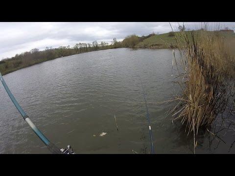 Открытие сезона весна 2017. Ловля карася на поплавочную удочку видео.