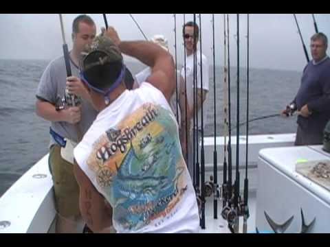 Offshore Fishing Trip in Orange Beach Aboard the High Cotton