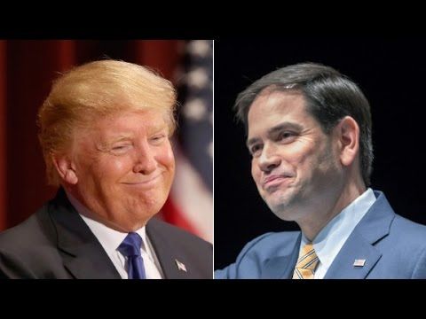 Trump still leads in New Hampshire, Rubio in second