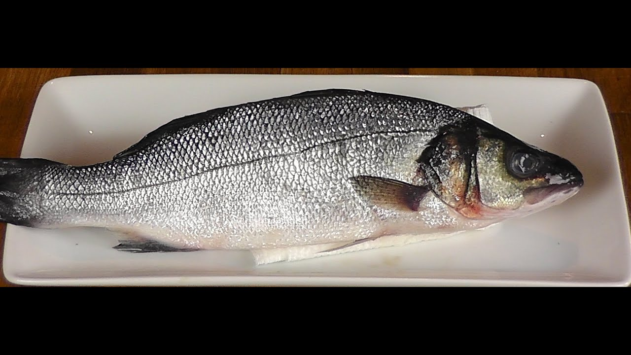 How to fillet whole branzino how to gut a fish fillet for What is branzino fish