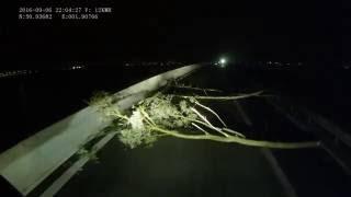 Calais: film nagrany przez kierowcę tira Mirosława Ferenca na początku września 2016 r.