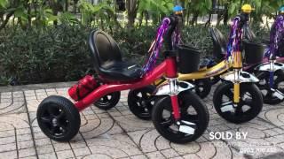 Xe đạp 3 bánh trẻ em Trishaws TS080