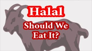 Video: Based on Exodus 34:15, Jews should avoid eating Halal slaughter meat - RTC