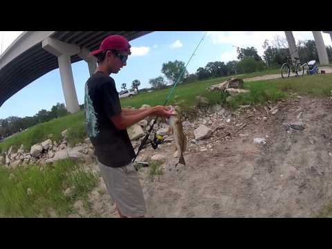 Tidal Creek Redfish Fishing with Live Mullet
