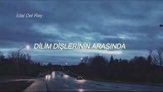 Download Lagu Troye Sivan - My My My (Türkçe Çeviri) Gratis STAFABAND