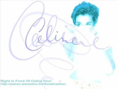 Celine Dion - Coulda Woulda Shoulda KARAOKE/INSTRUMENTAL (One Heart)