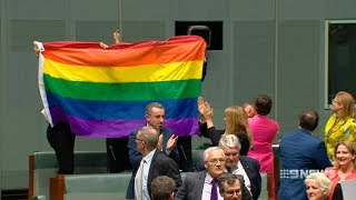 Marriage Equality | 9 News Perth