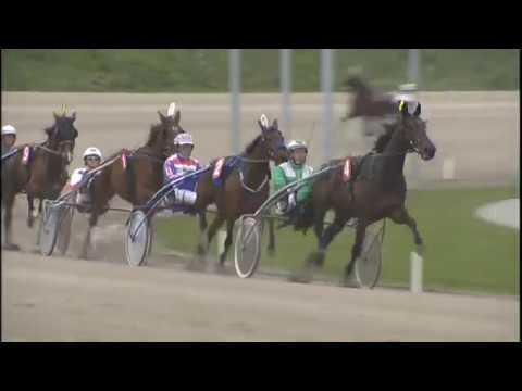 Vidéo de la course PMU PRIX RUNNERZ.NL