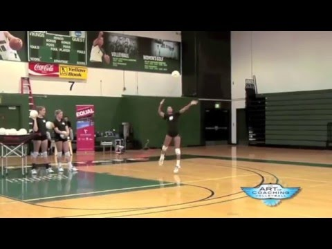 One-handed jump float serve - The Art of Coaching Volleyball