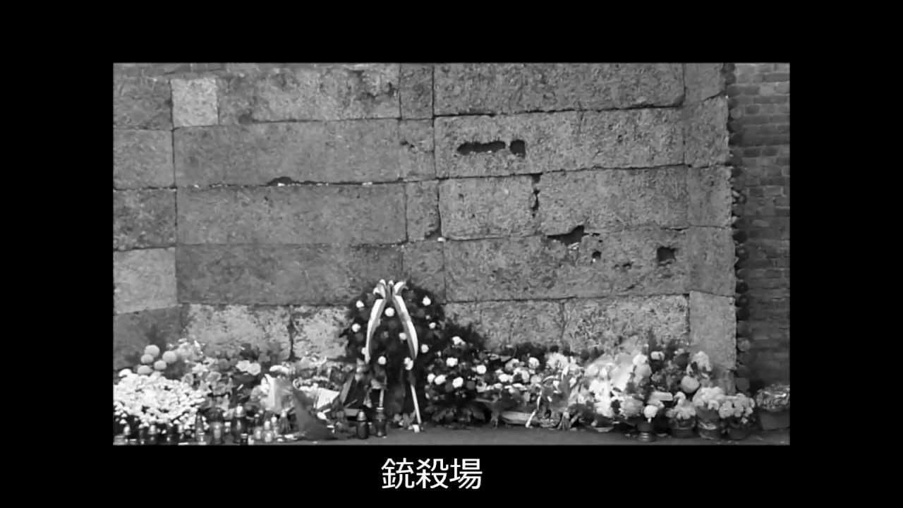 Auschwitz Tour Youtube