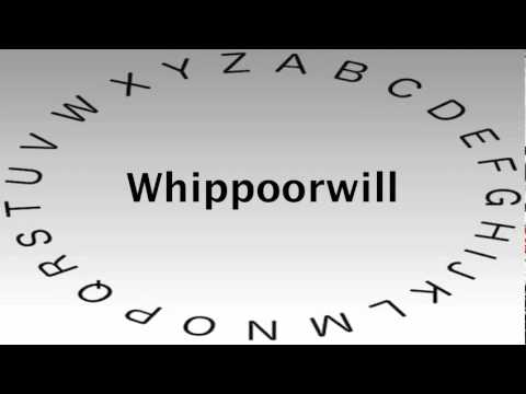 Spelling Bee Words and Definitions — Whippoorwill