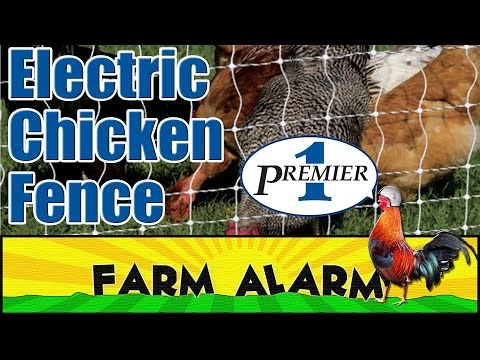 Premier One - Poultry Net - Electric Chicken Fence - a Farm Alarm Short Film