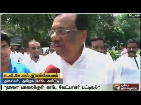 Can't reply to P Chidambaram's comments on Congress being weak in TN: EVKS Elangovan