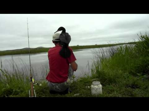 озера бакланово рыбалка
