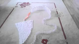 Paper dominoes guinnes world record
