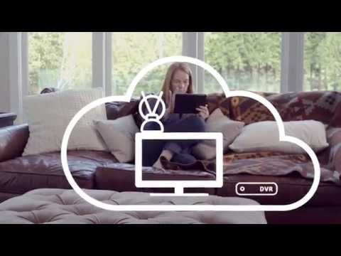 Aereo: The Easiest Way to Record & Stream Live TV Online