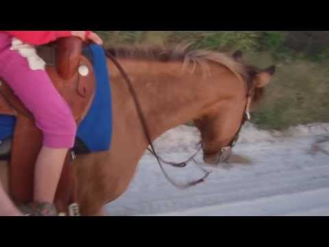 Crazy Horse Girls! video