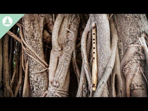 Bamboo Flute Music, Asian Music, Meditation, Relaxing