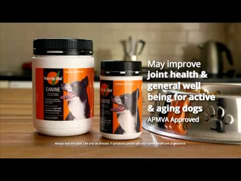 Rose-Hip Vital® Canine 15 sec TVC - Keep doing the things you love!