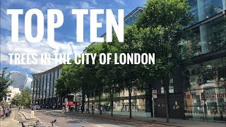 Top Ten Trees in the City Of London
