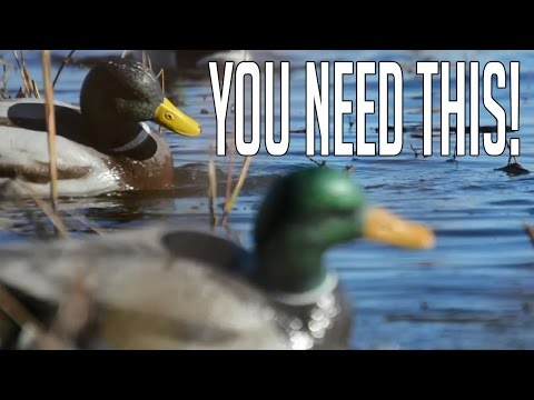 The Most Important Piece Of Duck Hunting Equipment