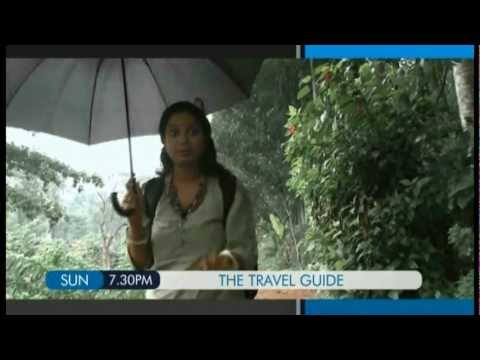 THE TRAVEL GUIDE - Promo