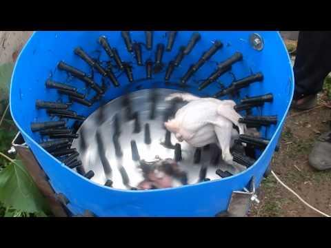 Перощипальная машина своими руками для гусей