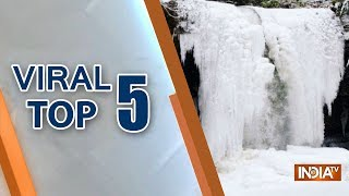 Viral Top 5 | January 21, 2019