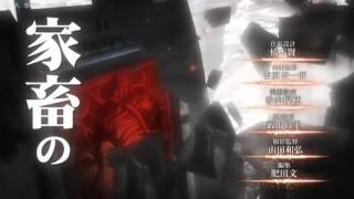 TV Anime 9 Shingeki no kyojin