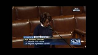 Maxine Waters Says Trump Voters Aren't as Patriotic as Democrats