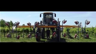 Hagie 4 row Quantum Mist Vineyard Sprayer