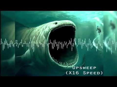 ТОП-10 Странных звуков под водой.