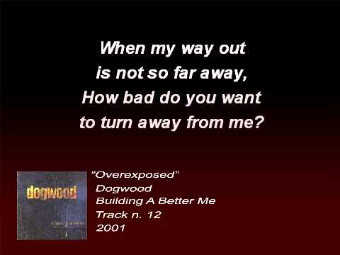 Dogwood - Overexposed