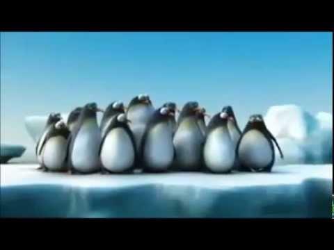 Porno  Salvaje   Con  Animales   Jajajaj video