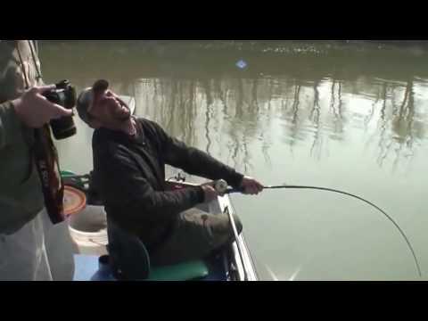 ловля больших сомов на днепре