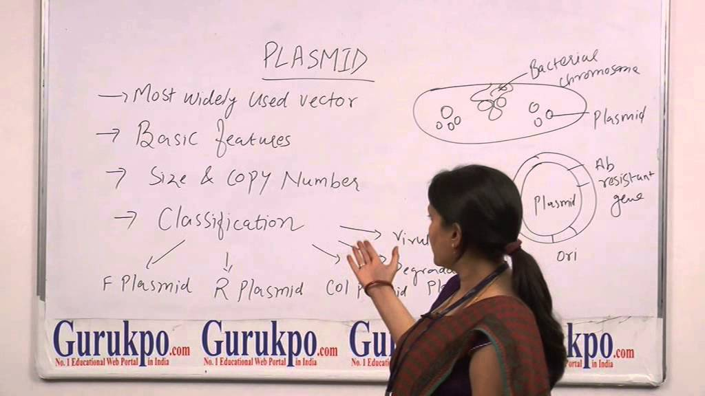 Plasmid lecture, B.Sc, M.Sc by Dr. Leena Kansal - YouTube