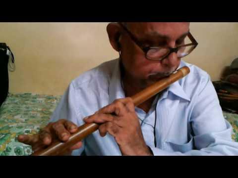 Patil flutist - Ye Raaten Ye Mausam Nadi Ka Kinaara Instrumental...