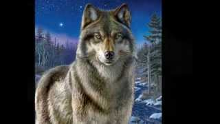 Anime wolves - Listen to your heart (Nightcore)