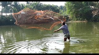 Net Fishing | Catching Big Fish With Cast Net | Net Fishing in the village (Part-114)