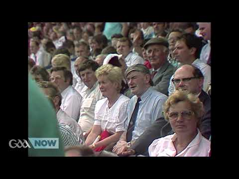 1989 All-Ireland SHC Semi-Final: Antrim v Offaly