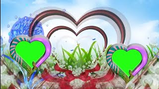 beautiful wedding green screen effects video hd background