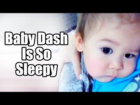Baby Dash is so sleepy