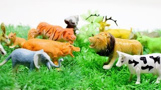 Jungle Adventure Wild Animals Playset For Kids - Fun Animal Toys For Kids | Toys For Kids