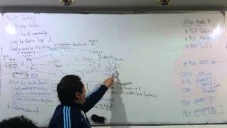 73-CCNP Routing 300-101 (Session 19 Part 2) By Eng-Ahmed Nabil - Arabic
