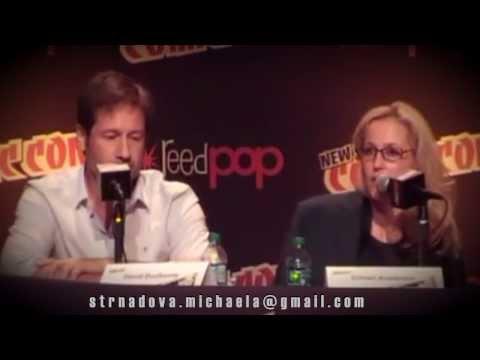 David Duchovny and Gillian Anderson  2013