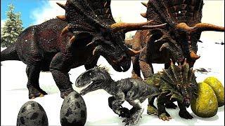Roubando Ovos De Indoraptor, Familia Triceratops Em Perigo! Ark Survival Evolved
