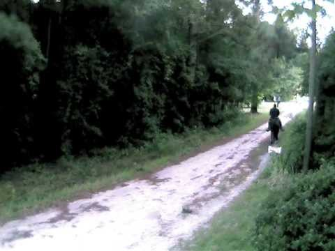 Camera 1 2011-07-22 194421sgt bowie-.wmv