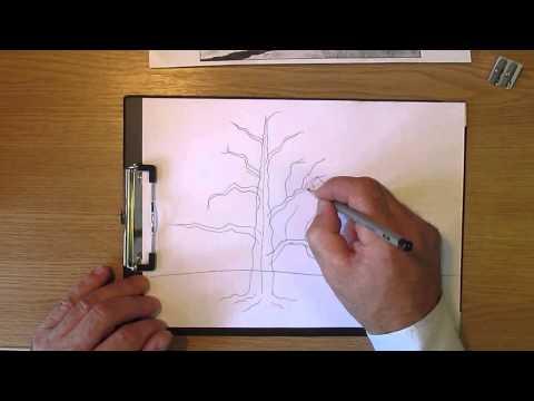 Как рисовать дерево дуб. Часть 1. Урок 11. How to draw oak tree. Lesson 11